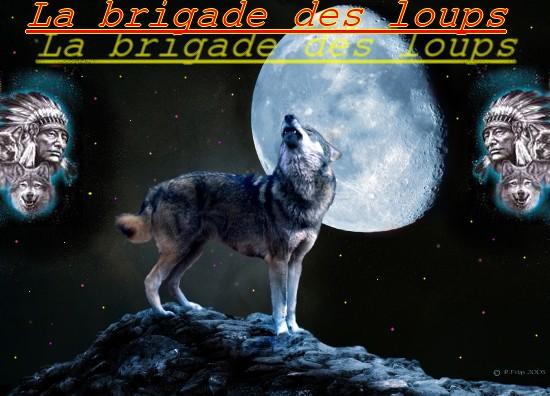 La Brigade des loups Index du Forum
