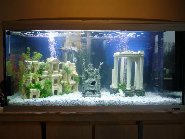 Decor Aquarium Le Moins Cher Paypal